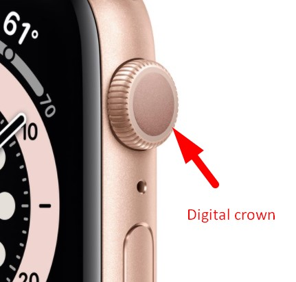 Digital Crown Apple Watch Series 6